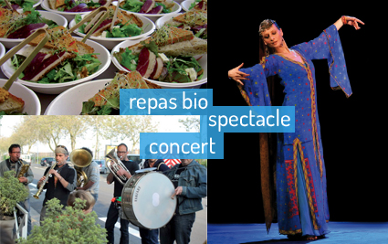 repas-spectacle-concert
